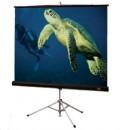 Екран 250 x 250 см